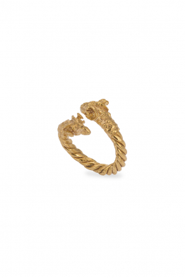 Glowing Diaries ARIES THIN RING