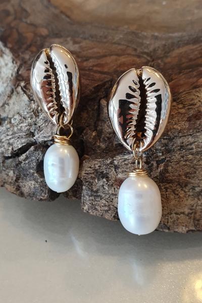 Shell pearl Shell pearl