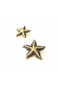 Starfish Küpe