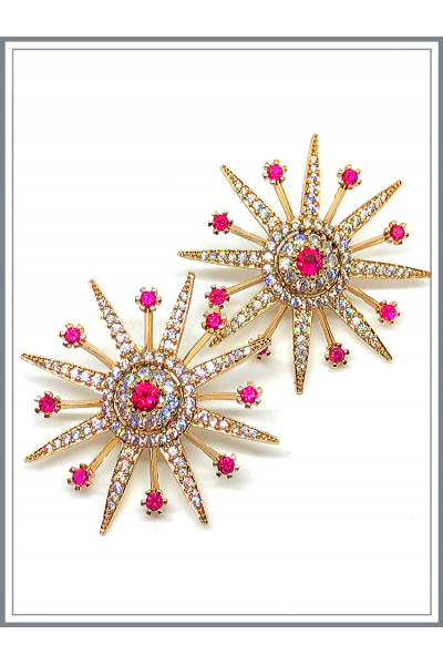 Snow Flake Earings With Ruby