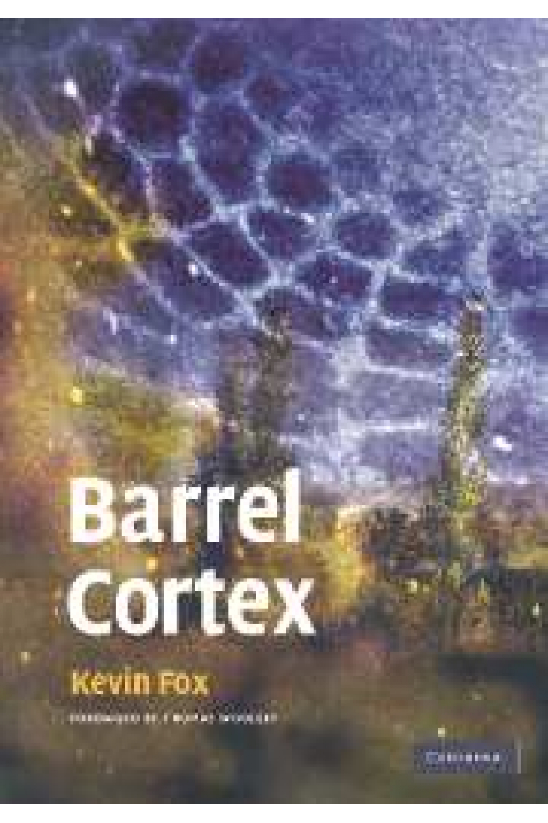 barrel cortex (kevin fox)