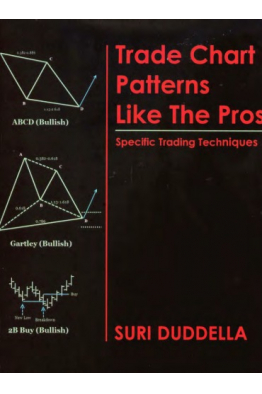 Book Store Trade Chart Patterns Like the Pros Suri Duddella