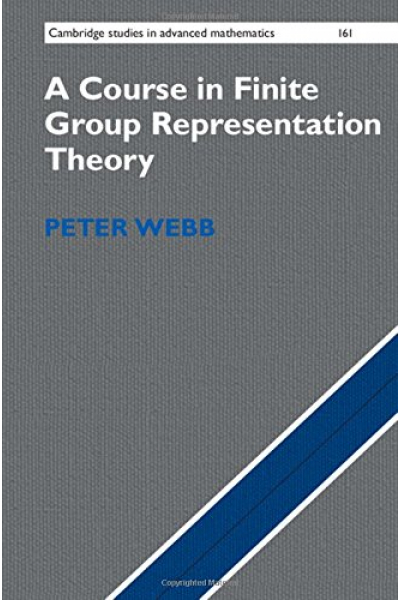 A Course in Finite Group Representation Theory (
