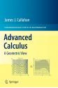 Advanced Calculus: A Geometric View