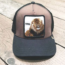 Goorin Bros Lion Hat